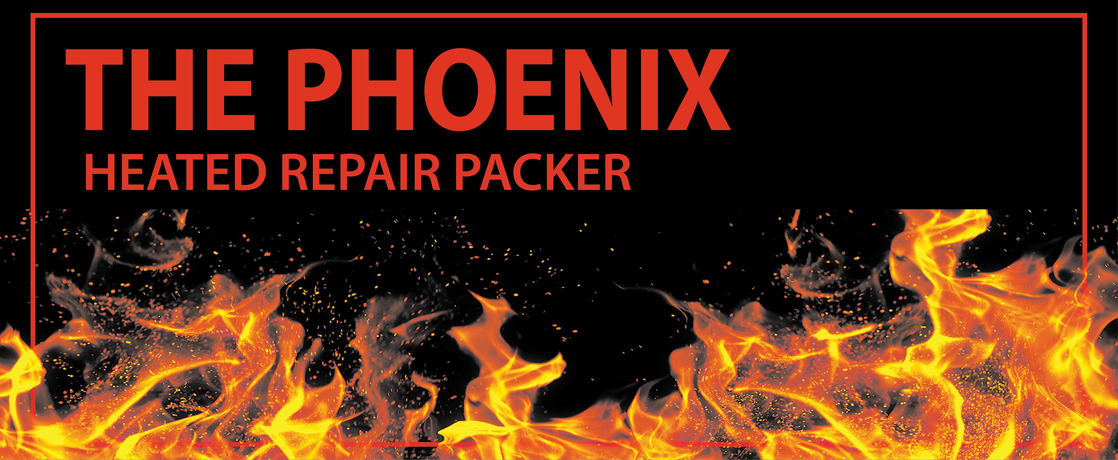 Phoenix System